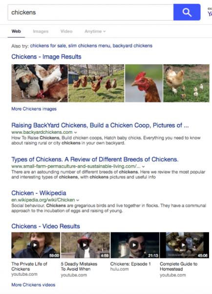 chickens_Google