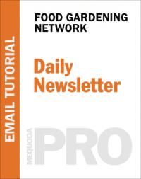 In-Depth Tutorial: Daily Email Newsletter Framework